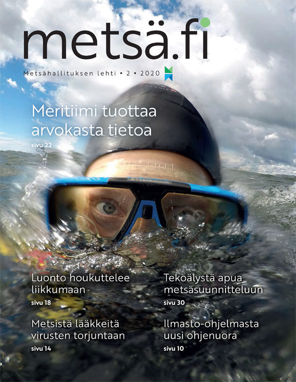 Metsä.fi-lehden 2/2020 kansi