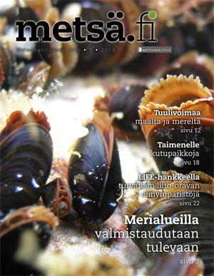 Metsä.fi-lehden 3/2019 kansi