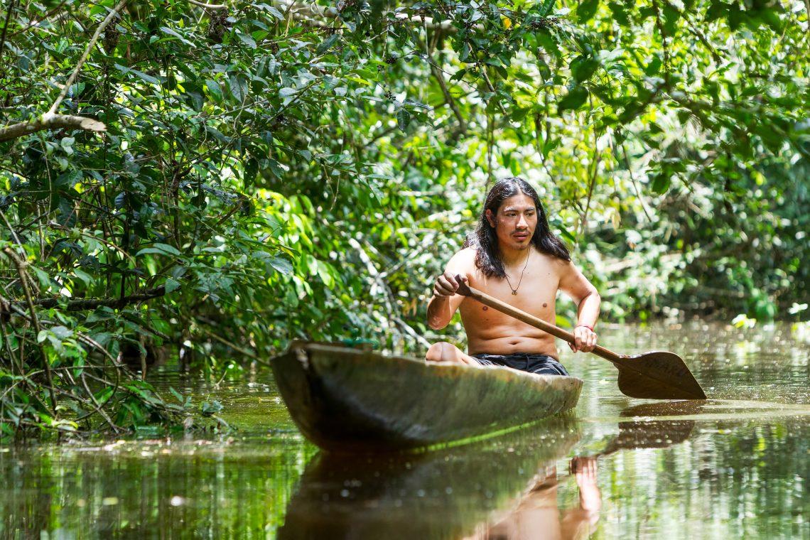 Meloja Amazonilla