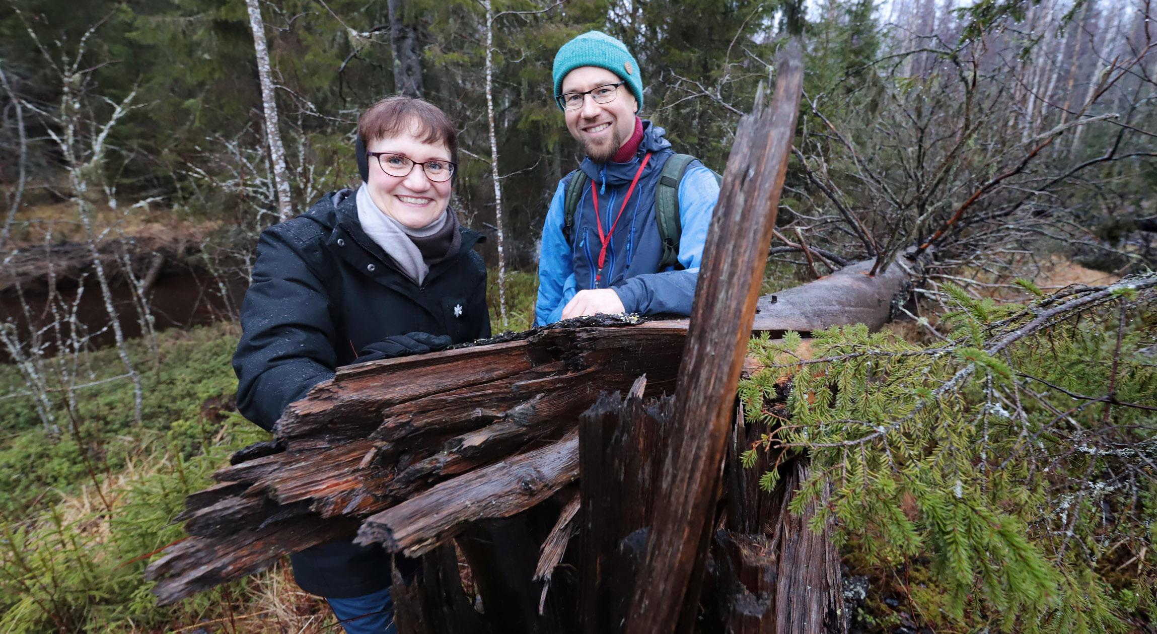 Maarit Kaukonen ja Tuomas Kallio kaatuneen puun vierellä
