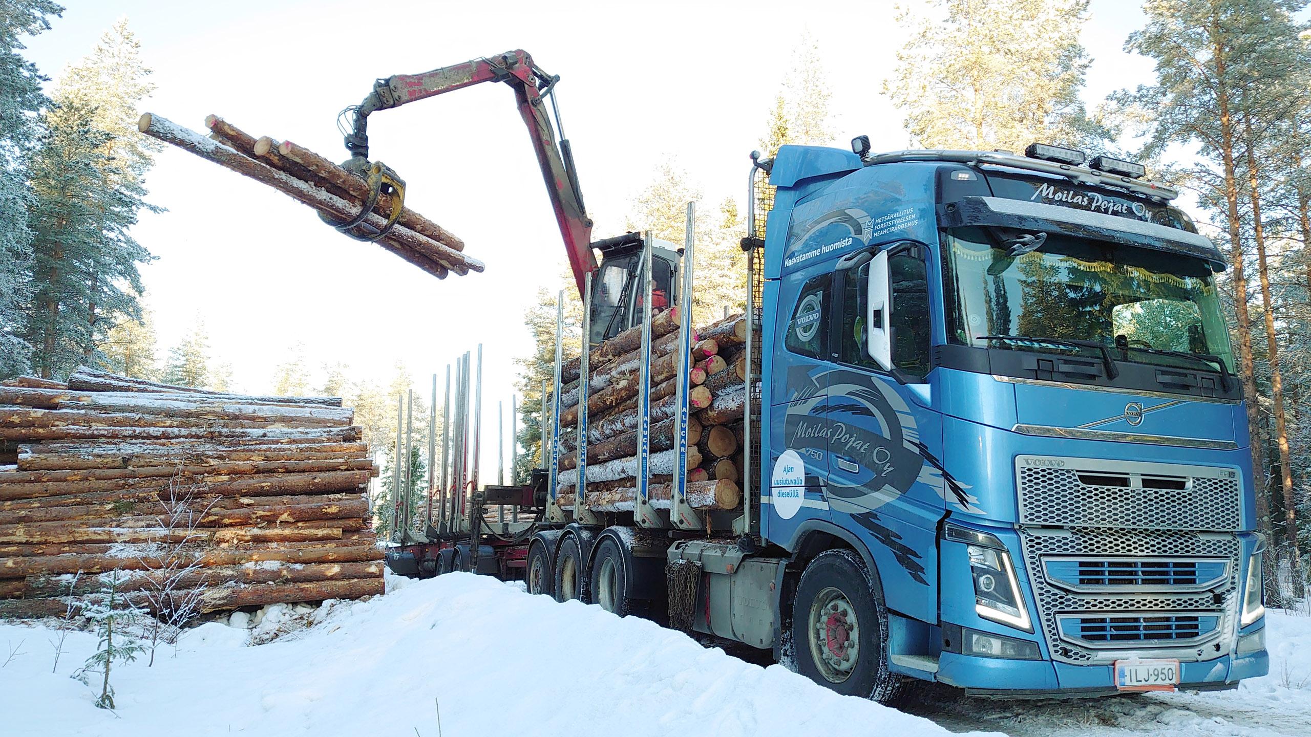 Puutavara-autoa lastataann talvisella metsätiellä